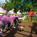 Human foosball replaces pig wrestling at Wisconsin parish's picnic